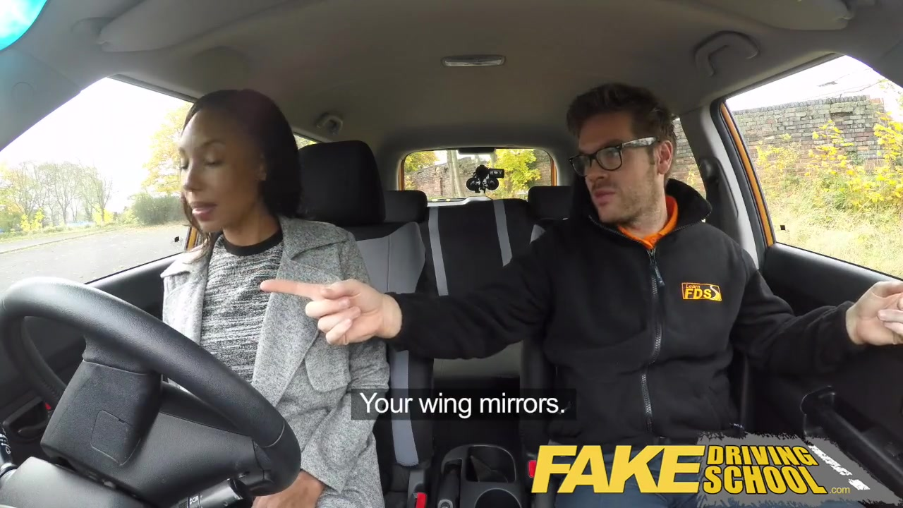 Fake Driving School Ella